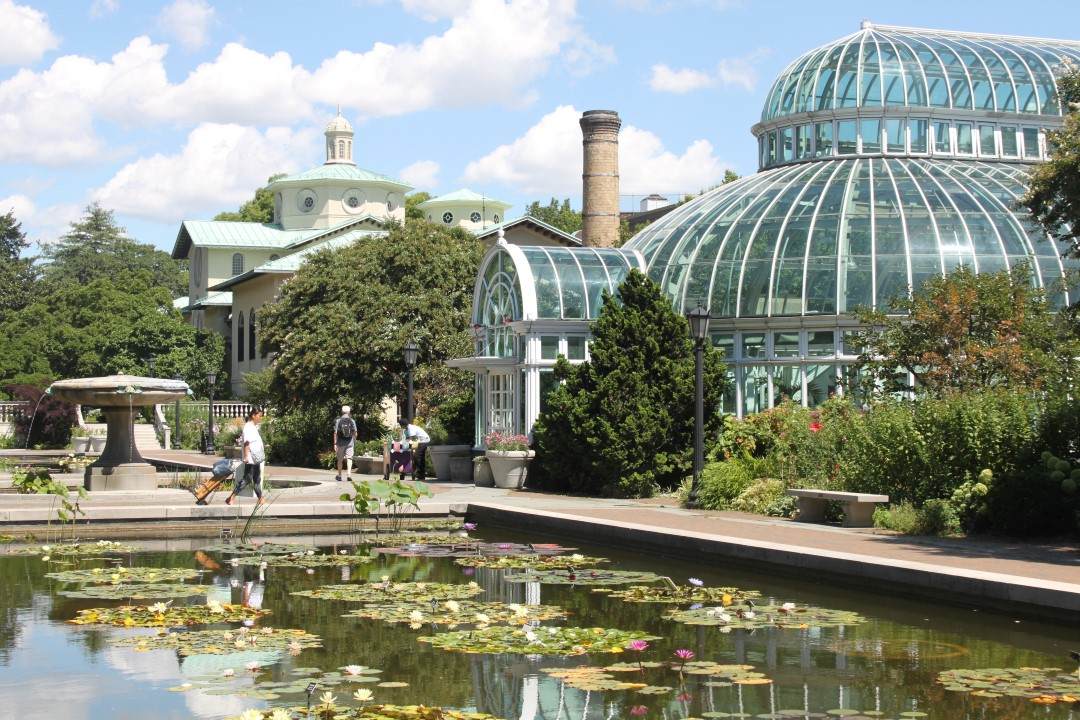 Visite du jardin botanique et du mus e de brooklyndu vent for Jardin new york